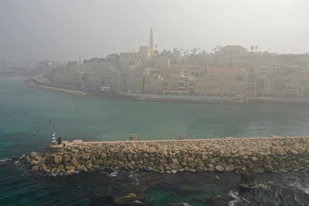 El cambio climático destruye las especies autóctonas en bajas aguas de Israel
