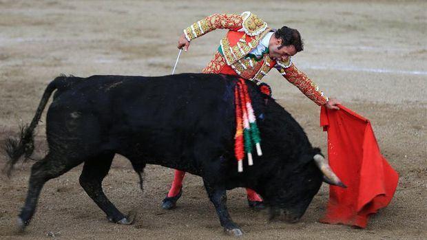 El diestro español Antonio Ferrera da un pase a un toro durante una de sus faenas en la Feria de toros 'San Isidro Labrador' hoy, en Latacunga, Ecuador.