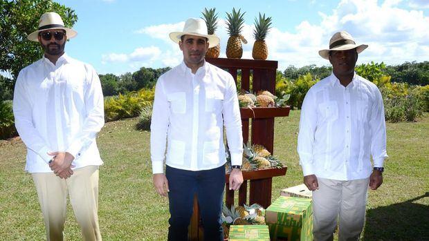 Embajadores dominicanos visitan proyecto de piñas de Monte Plata