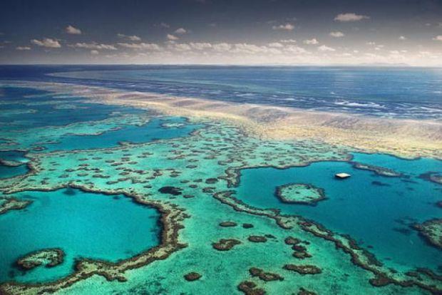 La COP26 del Clima expondrá sus prioridades en un foro socioambiental