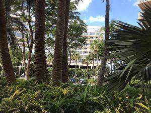 Fotografía de una zona residencial cubierta con árboles y plantas el 21 de marzo de 2021 en un vecindario de Miami, Florida, EE.UU.