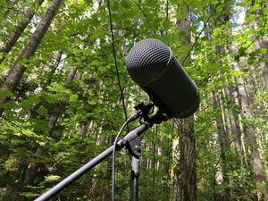 Vuelve el Premio de Periodismo Ambiental en su quinta edición.