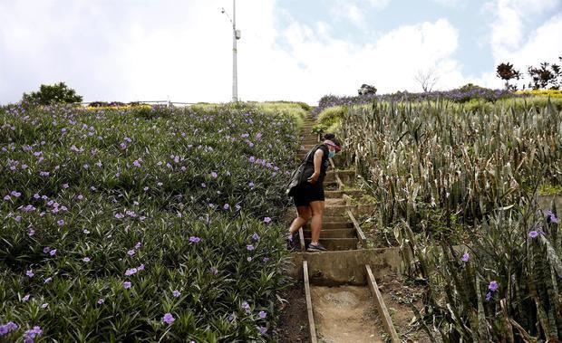 Moravia, el vibrante barrio de Medellín que transformó su basurero en jardín
