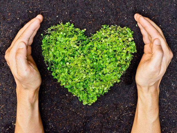 Jumbo adopta medidas para el cuidado del medioambiente.