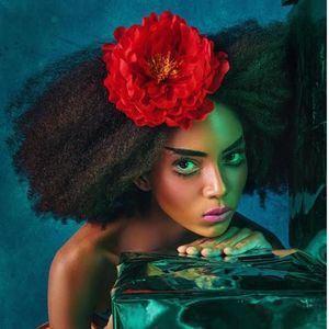 La Top Model dominicana Andra.