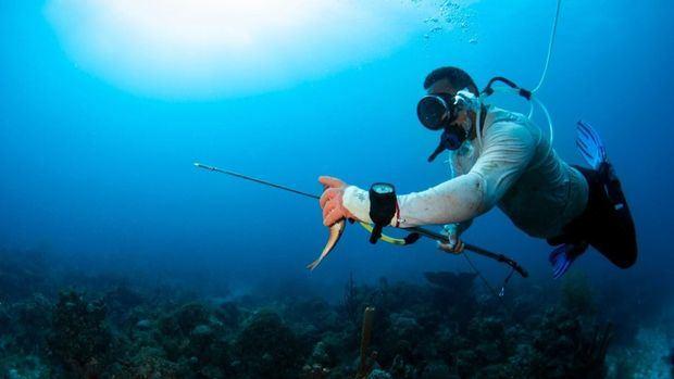 Estudio auspiciado por APAP revela discapacidad sufren pescadores artesanales