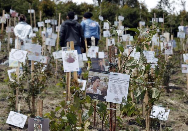 Las cenizas de las víctimas de la covid-19, fuente de vida de un páramo en Colombia