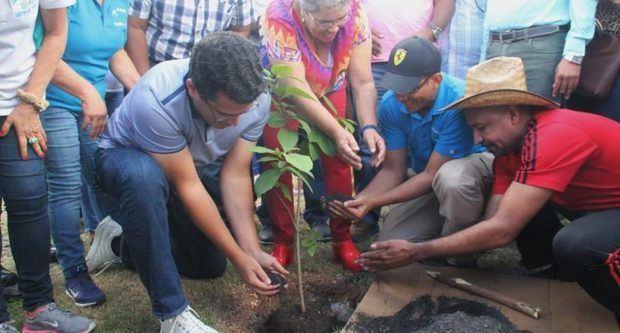 Desarrollan jornada de arborización en el Distrito Nacional