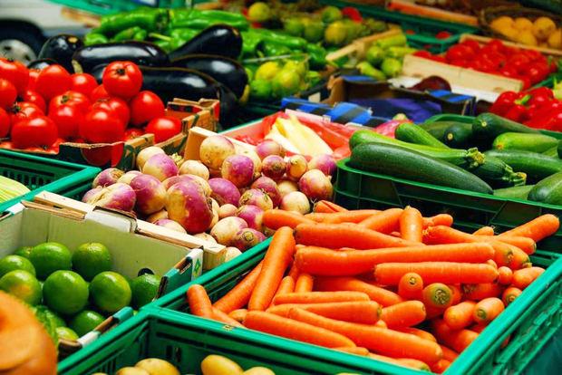 Grupo MACAPI obtiene primer lugar en feria internacional agroalimentaria de Florida