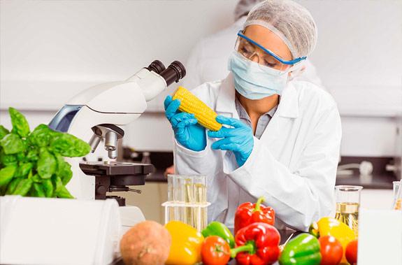 La UE muestra cautela ante el llamamiento al consumo local de alimentos.