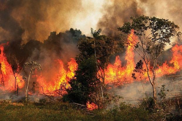Los incendios vuelven a amenazar la Amazonia brasileña tras dispararse en julio