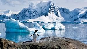 Sylvia Earle: la Antártida y sus aguas son claves contra el cambio climático