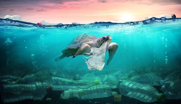 Más de 10 millones de toneladas de plástico se vierten cada año en los océanos