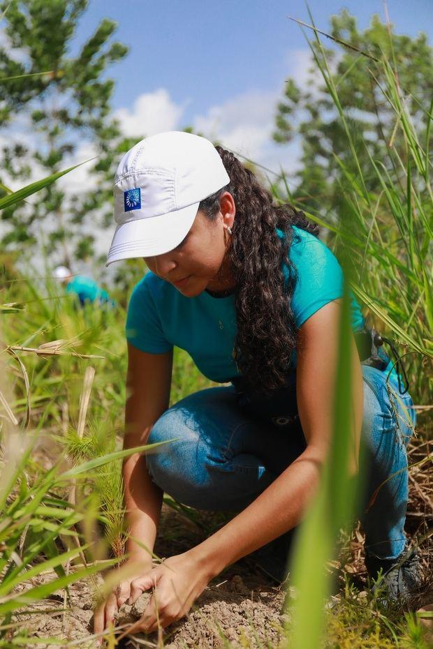 Grupo Popular contribuye a la regeneración boscosa de la cuenca alta del Ozama