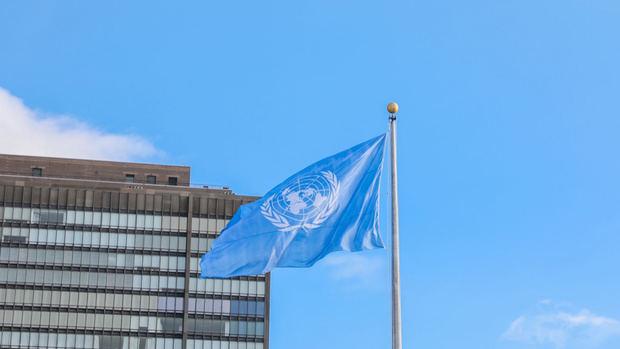 Bandera ONU.