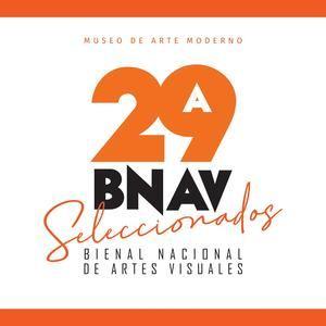 Bienal de Artes Visuales.