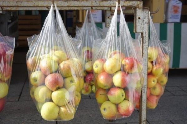 Recogen firmas en contra de las bolsas plásticas en el país