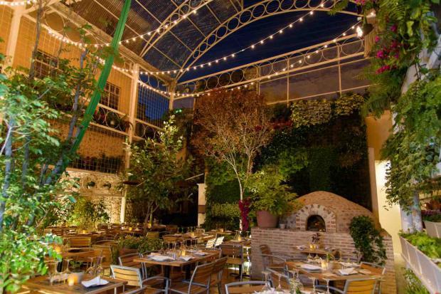 Lugares para comer en la Ciudad Colonial