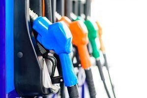 Gobierno ha destinado 3,000 millones de pesos en subsidios para combustibles.