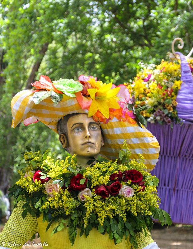 Festival de las flores evoca la belleza de los recursos naturales de Jarabacoa