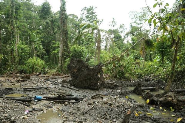 Latinoamérica busca integrarse para prevenir delitos ambientales