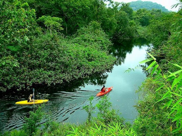 Colombia se prepara para promover ecoturismo en medios digitales