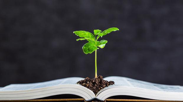 Lanzan proyecto para capacitar instituciones de RD en generación de información y conocimiento climático