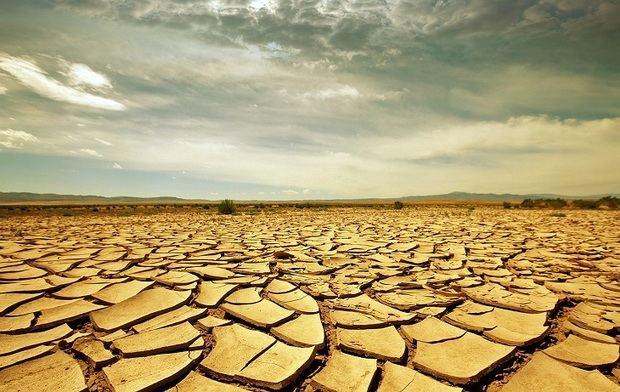 Nadie hace lo suficiente para revertir el cambio climático