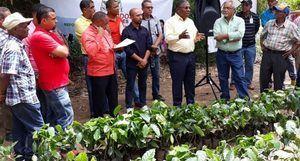 El director ejecutivo del INDOCAFE, ingeniero agrónomo Marino Suarez Joran, ofrece detalles sobre la información.