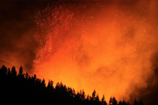 Greenpeace denuncia que incendios en Siberia afectan 4,5 millones hectáreas