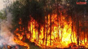 Incendios forestales en Columbia Britanica, Canada
