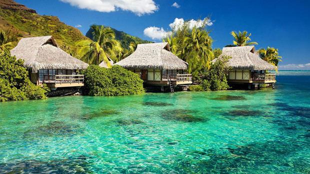 JAPEX la feria turística de Jamaica se realizará de forma virtual
