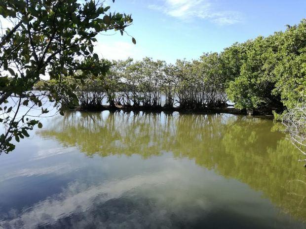 Parque Ecológico de Nigua, Juana Peña.