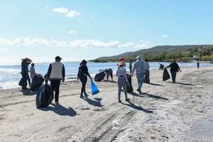 Más de cien colaboradores formaron equipos para limpiar tres playas.