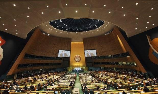 Asamblea General de las Naciones Unidas.