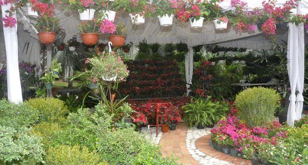 Jardín Botánico inaugura su XV Festival Nacional de Plantas y Flores.