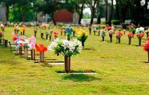 Cementerio Puerta del Cielo.