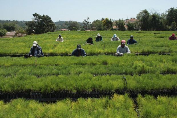 Agencia Francesa de Desarrollo aportará 20 millones de euros al Plan Sierra