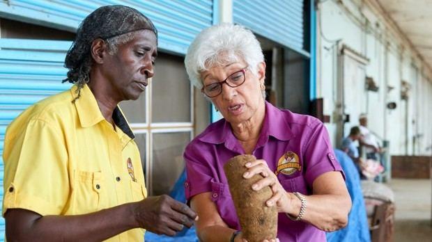 Mujeres electricistas, plomeras y empresarias: los nuevos rostros de la fuerza laboral del Caribe