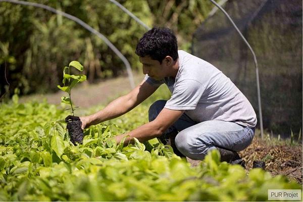Más de 500 Clubes de Leones del Subcontinente sembrarán miles de árboles