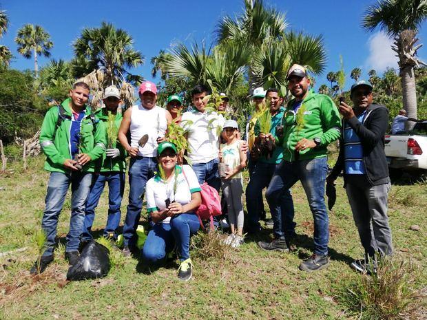 Industrias San Miguel realizó una jornada de reforestación y fueron plantados más de 12,000 árboles en las comunidades de Santiago Rodríguez La Guama, Romerillo y Arroyo Blanco.