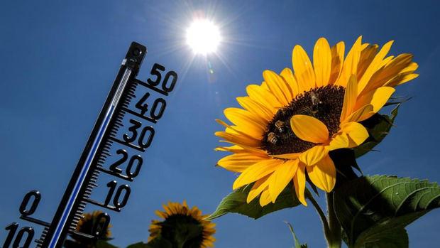 Ambiente meterológico estable y caluroso en todo el país