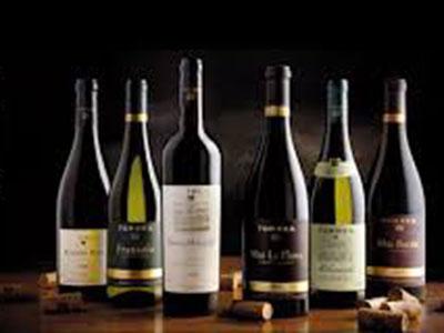 Familia Torres, la marca de vinos más admirada del mundo