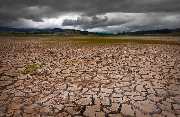 Las especies están siendo expulsadas de los trópicos por el cambio climático.