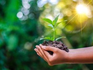 El acuerdo Escazú es el el primer tratado ambiental de América Latina y el Caribe.