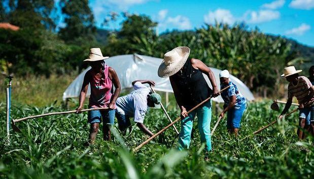La agricultura familiar debe realizar una transformación para enfrentar el cambio climático