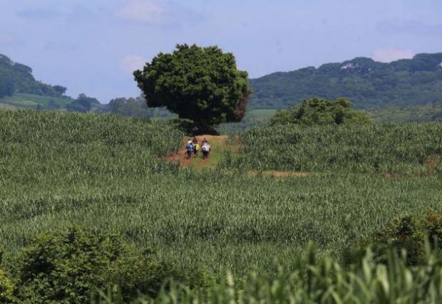 La FAO llama a aprovechar migración rural para el crecimiento de los países