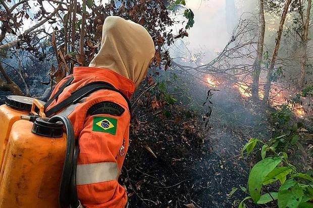 Foto del día 18 a agosto del 2019, esta fotografía fue cedida por el cuerpo de bomberos de la ciudad de Porto Velho, que muestra uno de los escenarios de los grandes incendios que azotan la Amazonía Brasileña.