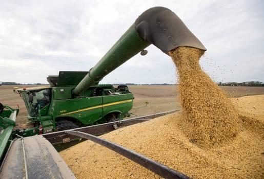 Tranque gobierno de EEUU afecta a los agricultores