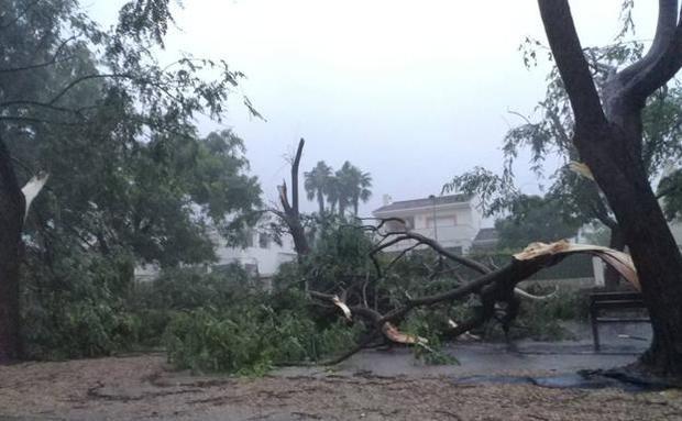 Las lluvias afectan varias viviendas y mantienen 18 provincias en alerta.